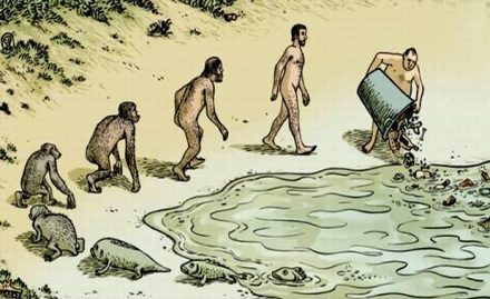 Evolution or Adaptation?